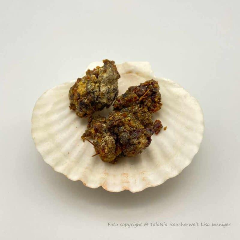 Zirbenharz aus Sibirien Produktbild TalaNia